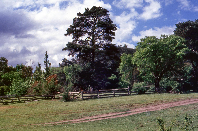 Wonnangatta Station History - Harry's Hut